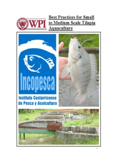 Best Practices for Small to Medium Scale Tilapia Aquaculture - PDF Drive