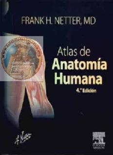Human pdf netter anatomy