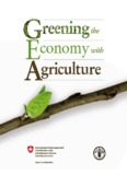 Greening the Economy with Agriculture - Food and Agriculture