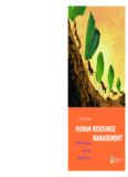 Human Resource Management 6th Edition