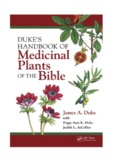 Medicinal Plants of the Bible - Macquirelatory.com