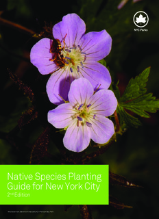 Native Species Planting Guide for New York City