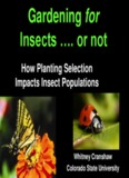 Gardening for Insects