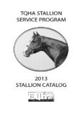 2011StallionCatalog - James Ballard | Creative Badass