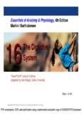 Essentials of Anatomy & Physiology, 4th Edition Martini