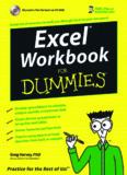 Excel Workbook For Dummies Apr 2006