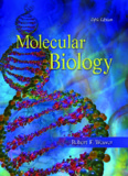 Molecular Biology (5th Ed)