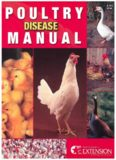 Poultry Disease Manual